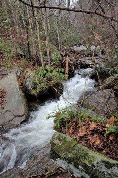 Cascade on Reedy Cove Creek