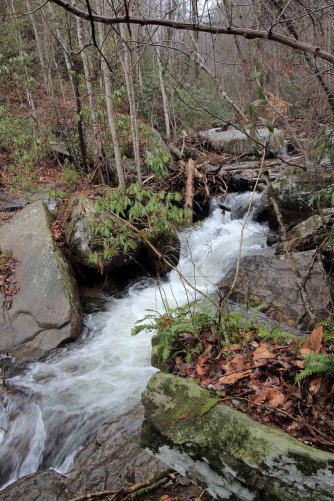 Cascade on Reedy Cove Creek