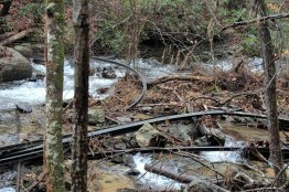 Old Rails in Reedy Cove Creek