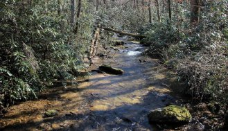 Laurel Fork